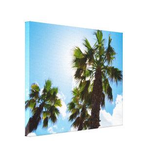 High Tropical Palm Trees Canvas Print