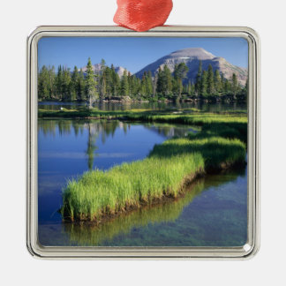 HIGH UINTAS WILDERNESS, UT, US, penisula, Silver-Colored Square Decoration