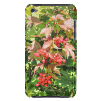 Highbush Cranberries Barely There iPod Cases