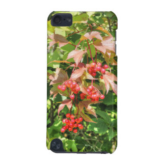 Highbush Cranberries iPod Touch (5th Generation) Cover