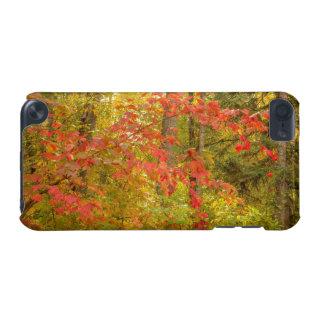 Highbush Cranberry iPod Touch 5G Covers