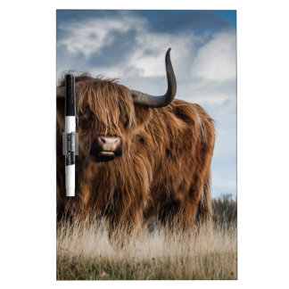 Highland Bull Dry Erase Board