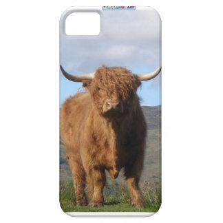 Highland Bull Phone cover