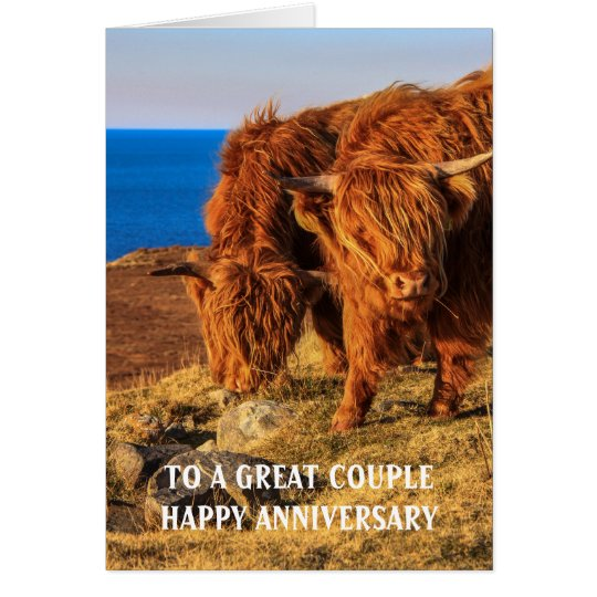 Highland Cattle Anniversary Card