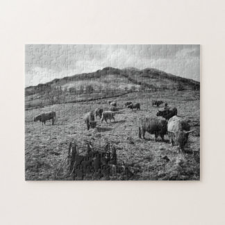 Highland Cattle at Tarbet by Loch Lomond, Scotland Jigsaw Puzzle