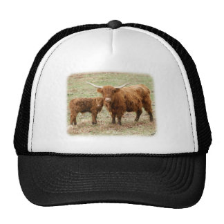 Highland Cow and calf 9Y316D-045 Hat