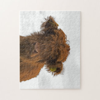Highland cow baby puzzle