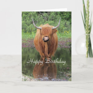 39d1cf2d3d1 Highland cow birthday card