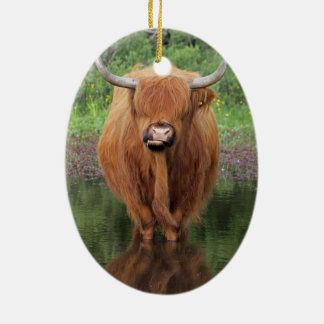 Highland cow ceramic oval decoration