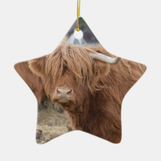 Highland Cow Double-Sided Star Ceramic Christmas Ornament