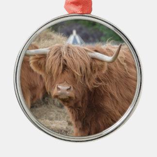 Highland Cow Christmas Tree Ornaments
