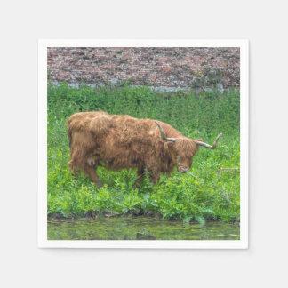 Highland cow disposable napkins