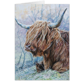 Highland cow, frosty morning card