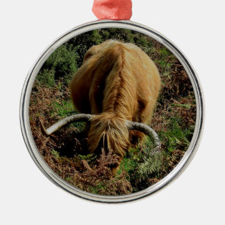 Highland cow in bracken on dartmoor Silver-Colored round decoration