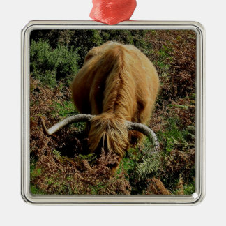 Highland cow in bracken on dartmoor Silver-Colored square decoration