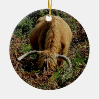 Highland cow in brackon on dartmoor round ceramic decoration