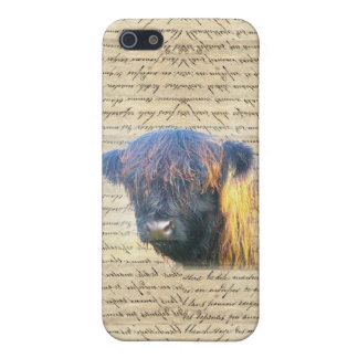 Highland cow iPhone 5/5S case