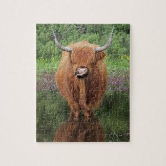 Highland cow jigsaw jigsaw puzzle