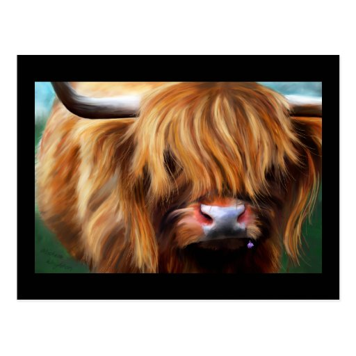 Highland Cow Painting Post Card