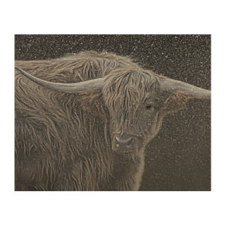 Highland cow picture wood print