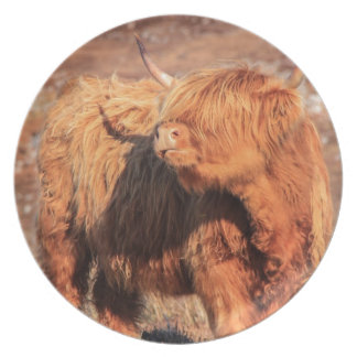 Highland Cow Plate