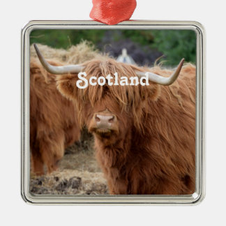 Highland Cow Silver-Colored Square Decoration