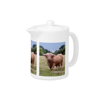 Highland Cow Teapot