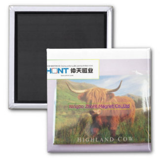 HIGHLAND COW--tin fridge magnet