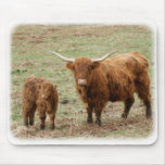 Highland Cow with calf 9Y316D-048 Mouse Pad