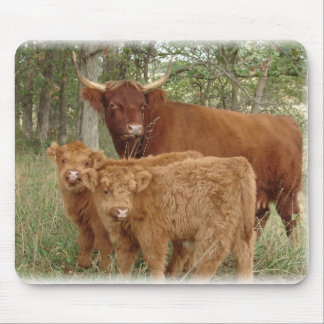 Highland Cow with Calves Mouse Pad