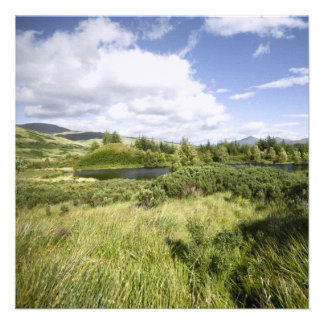 Highland Landscape • Card Invitation