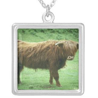 Highland Steer, Island of Mull, Inner Square Pendant Necklace