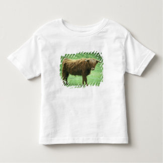 Highland Steer, Island of Mull, Inner Toddler T-Shirt