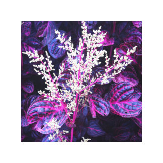 Highlands Flora Canvas Print
