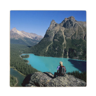 Hiker overlooking turquoise-colored Lake Wood Coaster
