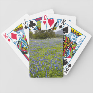 Hill Country, Texas, Bluebonnets and Oak tree Poker Deck