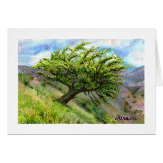 Hillside Hawthorn Card