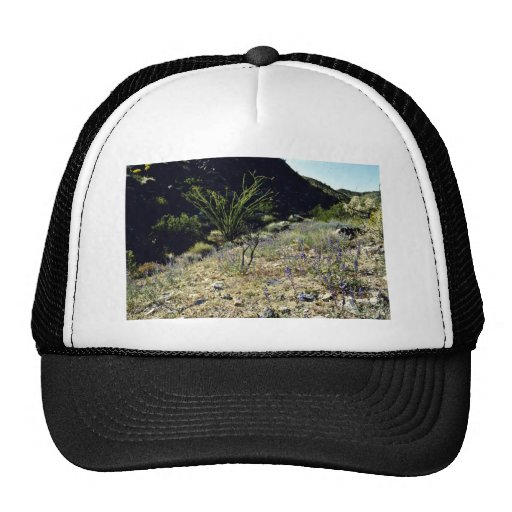 Hillside - Joshua Tree National Monument Hat