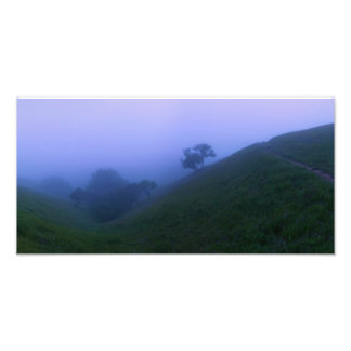 Hillside moor at dusk photo
