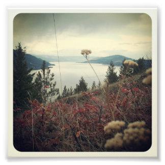 Hillside Photo Art