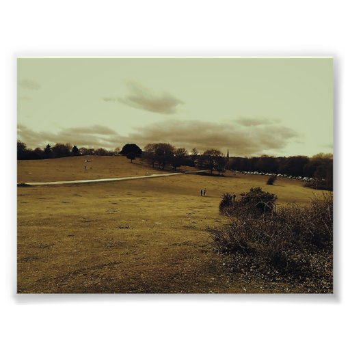 Hillside. Photo Print