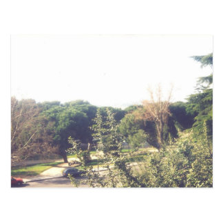 Hilltop Overlooking Palacio Real' Postcard