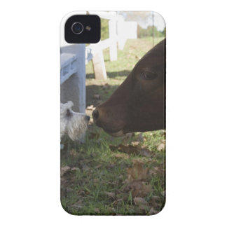 Hilton, Midlands, KwaZulu Natal Province, South Case-Mate iPhone 4 Cases