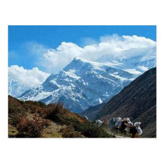 Himalaya Mount Everest India Nepal Travel Summer Postcard