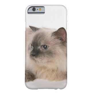 Himalayan Barely There iPhone 6 Case