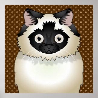 Himalayan Cat Cartoon Paws Print