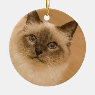 Himalayan Cat Christmas Ornament