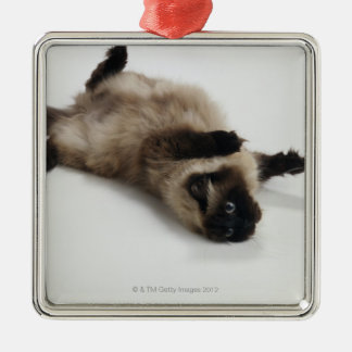 Himalayan Cat Lying on his Back Christmas Ornament