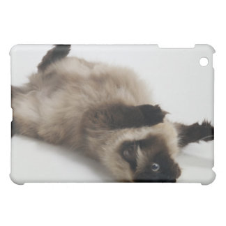 Himalayan Cat Lying on his Back iPad Mini Case