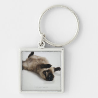 Himalayan Cat Lying on his Back Key Ring